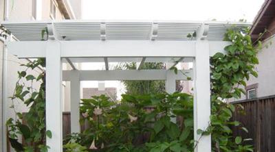 פרגולה לבנה עם צמחים בחצר